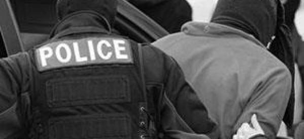 arresta-6416541651