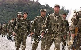الجيش الجزائري 2