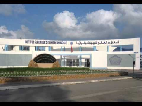 المعهد العالي